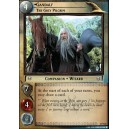 Gandalf, The Grey Pilgrim - 2P122